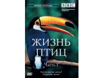 BBC: Жизнь птиц / BBC: The Life of Birds